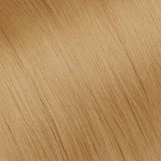 Tape in Hair extension № 27, golden blonde